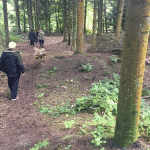 Tornby Klitplantage Hundeskov