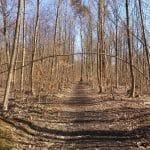 Geelsskov Hundeskov
